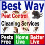BEST WAY PEST CONTROL